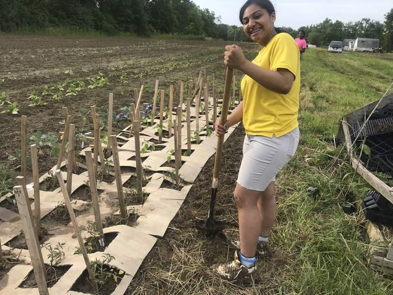 'Weed, soil, replant': 4 students learning ag | Local | Journal Gazette