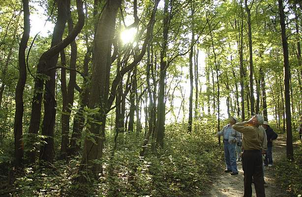 The group attracts all kinds of walkers, such as those seeking exercise, nature lovers or simply to socialize.