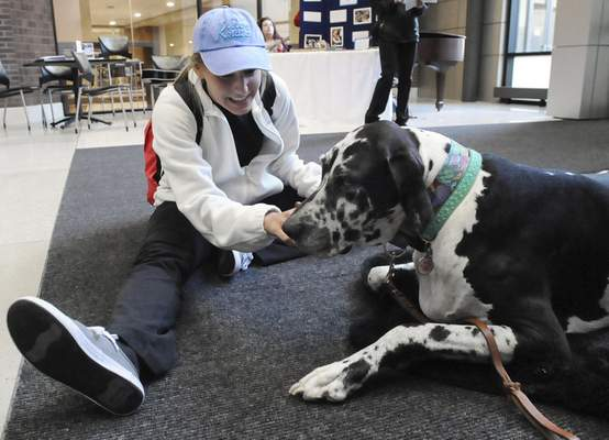 Michelle Davies | The Journal Gazette Brooke Romines, a psychology student at IPFW, takes time to pet Bessie, a 7-year-old Great Dane service dog with Three Rivers Visiting Dogs, during Wednesday's 27th annual IPFW Health Fair at the Walb Student Union.