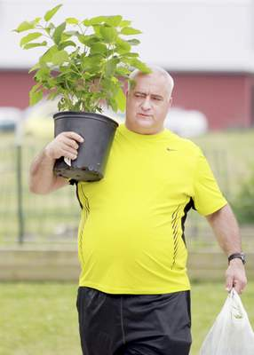Scott Eggenberger carries a hydrangea Saturday at Salomon Farm Park. A monarch way station planting was part of the native plant sale.