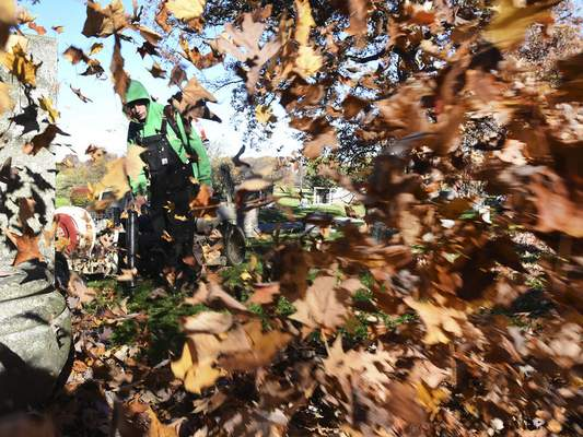 Photos of the Week November 11, 2016 | Local | The Journal