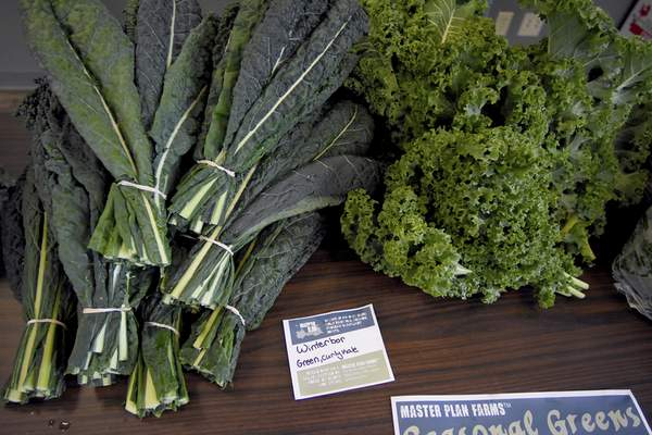 Master Plan Farms' seasonal greens including Winterbor Green Curly Kale, right, and Lacinato Dino Kale. They replace typical summer fair such as watermelon and strawberries. Winter produce can be used to create comfort food creations to keep you warm.