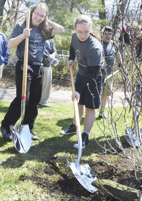 Rachel Von | The Journal Gazette Twins Alex,  left, and  Andrew Hall, 16, from Smith Academy of Excellence,  plant an Arbor Day  ceremonial tree Friday  near the Carole Lombard House. Mayor Tom Henry read an Arbor Day proclamation and announced that Fort Wayne has been named a Tree City USA for the 28th year in a row. The event also included speakers and poetry reading by Smith Academy  students.