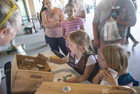 Brett Luke   The Journal Gazette  Klaire Vanderford, 5, left, and Khloe Vandeford, 7, learn about the importance of honey bees Sunday afternoon at the Discover Girl Scouting event at Parkview Field.