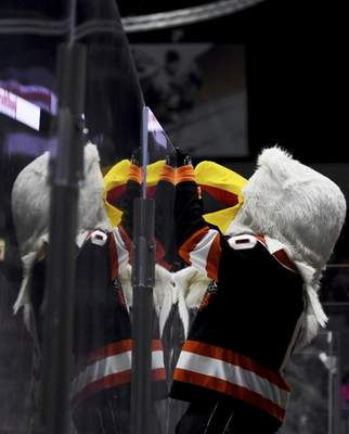 Katie Fyfe | The Journal Gazette  Komets' mascot Icy D. Eagle cheers on his team during the second period against the Kansas City Mavericks at Memorial Coliseum on Saturday.