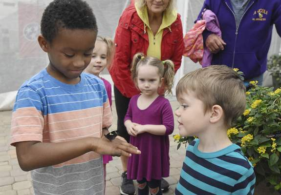 Michelle Davies | The Journal Gazette Israel McCormick, 7, shows his brother, August, 5, both from Bluffton, a butterfly that landed on his hand while visiting the Foellinger-Freimann Botanical Conservatory Wednesday morning.