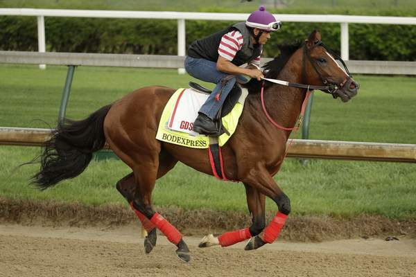 Kentucky Derby entrant Bodexpress runs during a workout at Churchill Downs Thursday, May 2, 2019, in Louisville, Ky. The 145th running of the Kentucky Derby is scheduled for Saturday, May 4. (AP Photo/Charlie Riedel)
