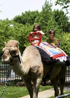 Katie Fyfe | The Journal Gazette Sister and brother June and Jonathan Barchus enjoy a camel ride together during Arab Festival at Headwaters Park in Fort Wayne on Saturday, June 1st, 2019.