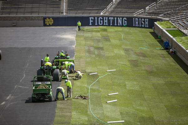 Associated Press Natural turf is installed at Notre Dame Stadium in preparation for a professional soccer match in South Bend on Monday.