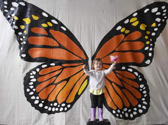 Adalynn Kenny, 2, gets her picture taken Sunday in front of giant butterfly wings.