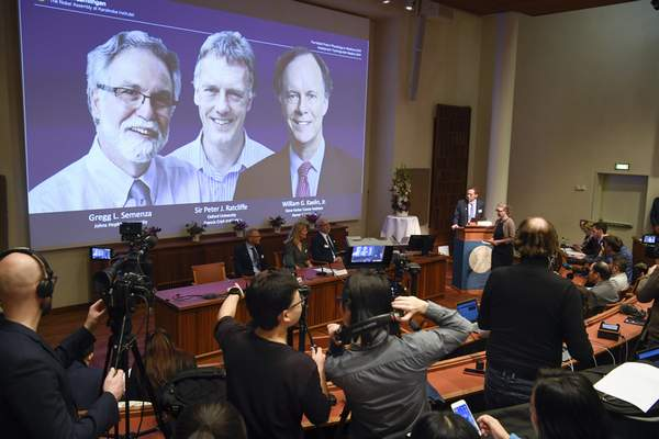 Thomas Perlmann, far right, Secretary-General of the Nobel Committee announces the 2019 Nobel laureates in Physiology or Medicine during a news conference in Stockholm, Sweden, Monday Oct. 7, 2019. (Pontus Lundahl/TT via AP)