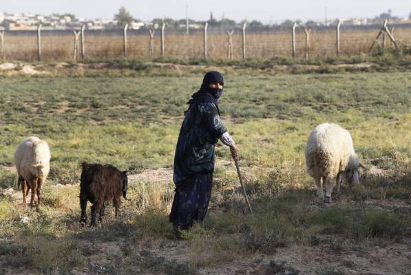 A woman walks her sheep at the border between Turkey and Syria, in Akcakale, Sanliurfa province, southeastern Turkey, Tuesday, Oct. 8, 2019. (AP Photo/Lefteris Pitarakis)