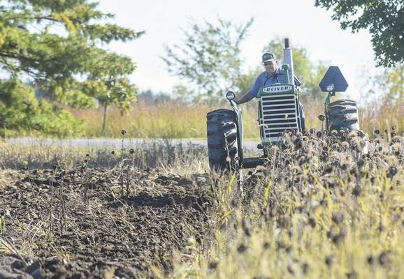 Michelle Davies | The Journal Gazette Driving his 1958 Oliver tractor, Jim Castleman uses a three-bottom moldboard plow to dig into the sunflower field at Salomon Farm on Wednesday morning after the Fall Harvest Festival. Castleman is part of the Tri-State Antique Tractor Club.