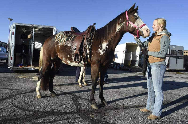 Horses and riders take to towpath for city trail ride   Local   Journal Gazette