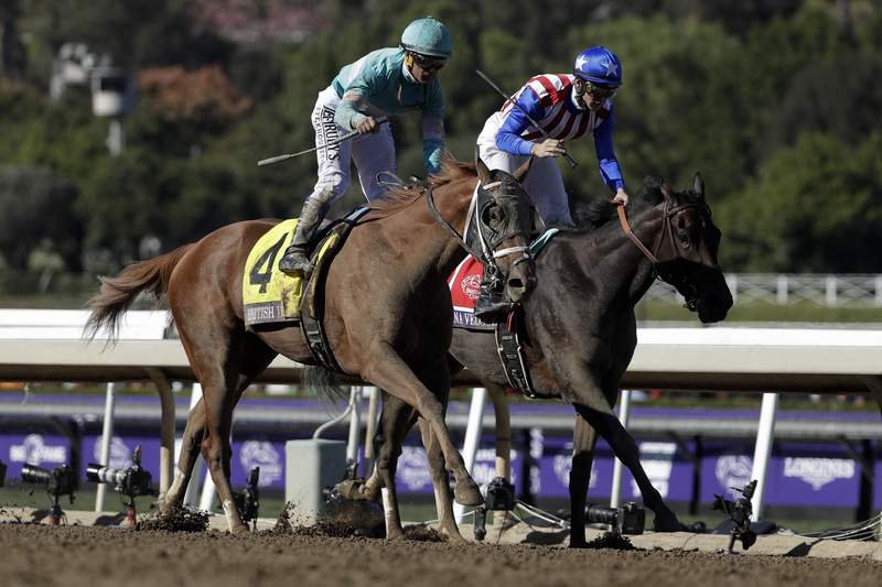 Storm The Court Scores 45 1 Upset In Breeders Cup