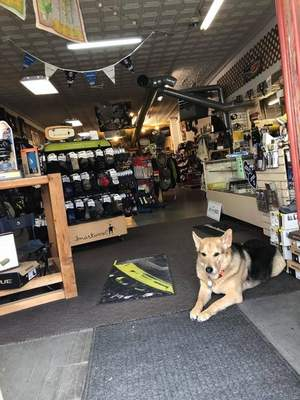 Courtesy Bodey works as a greeter and security guard at Earth Adventures Unlimited.