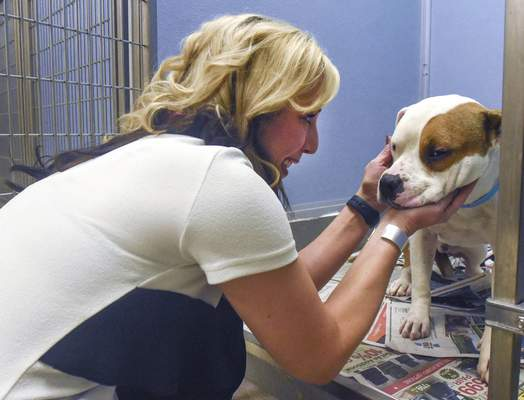 Allison Miller, executive director of H.O.P.E. for Animals,  comforts Myles, an Allen County SPCA dog who was neutered at the clinic.