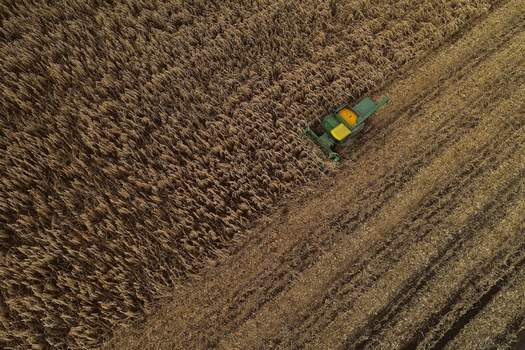 Producer Prices FILE - In this Nov. 25, 2019, file photo a corn harvester pushes through a field of grain corn in Warsaw, N.Y. On Thursday, Dec. 12, the Labor Department releases the Producer Price Index for November. (AP Photo/Julie Jacobson, File) (Julie Jacobson STF)