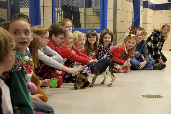 Katie Fyfe | The Journal Gazette  A Beagle is brought out to greet all of the kids during the Deck the Howls event at Fort Wayne Animal Care & Control on Saturday.