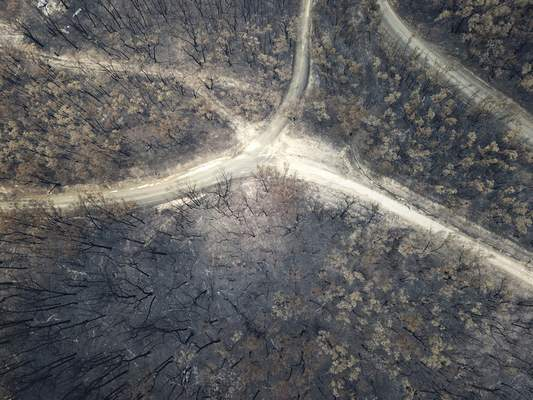 Bushlands at Nerrigundah, Australia, Monday, Jan. 13, 2020, are severely burned after a wildfire ripped through the town on New Year's Eve. (AP Photo/Sam McNeil)