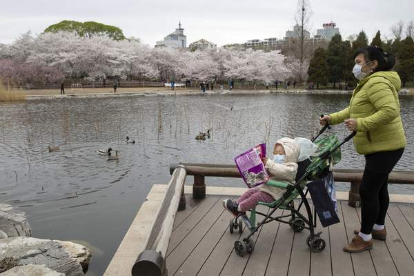 A woman pushes a child on a pram across from cherry blossoms at the Yuyuantan Park in Beijing on Thursday, March 26, 2020. (AP Photo/Ng Han Guan)