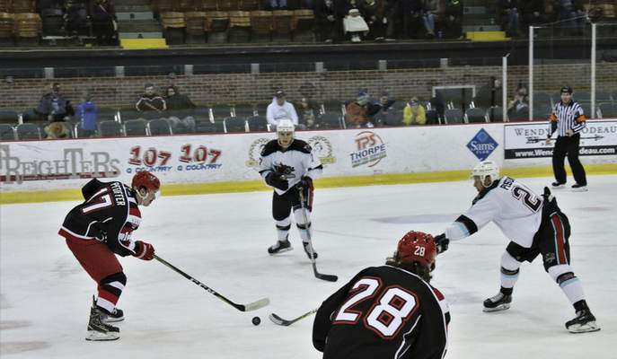 Sabrina Mason | Special to The Journal Gazette  Former Indiana Tech player Jarrett Pfeiffer, left, skates for the Port Huron Prowlers.