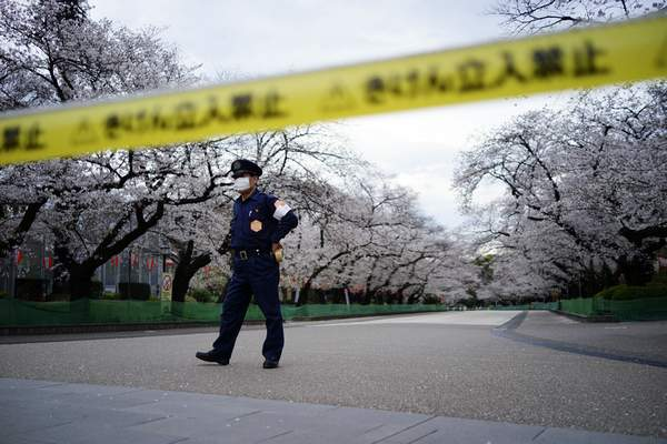 FILE - In this March 27, 2020, file, photo, a security person stands guard at the famed street of cherry blossoms which is closed as a safety precaution against the new coronavirus at Ueno Park in Tokyo. (AP Photo/Eugene Hoshiko, File)