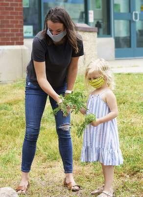 Katie Fyfe | The Journal Gazette  Mari Tibbot, 4, collects leaves for her cyanotype with the help of her mother Sarah Tibbot at Science Central on Saturday.