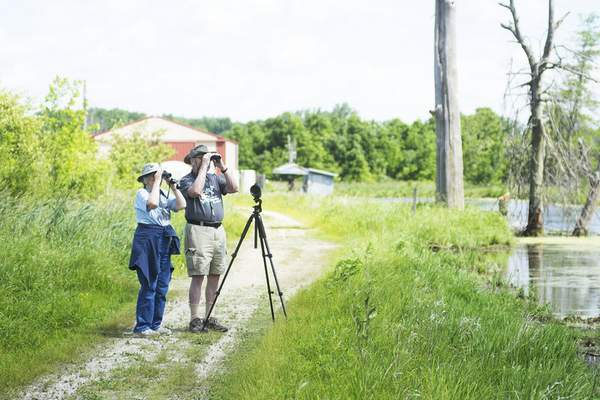 Katie Fyfe | The Journal Gazette Cynthia and Ed Powers bird watch together at the Eagle Marsh Nature Preserve on Thursday, June 11th, 2020.