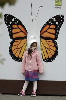 Virus Outbreak California A girl wears a mask while looking at a butterfly exhibit at the San Francisco Zoo on Monday, July 13, 2020, in San Francisco. (AP Photo/Ben Margot) (Ben Margot STF)