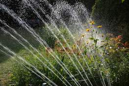 Pixabay