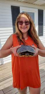 Bailey McCann, 14, an expert catch-and-release turtle hunter from Leo, shows off one of her larger turtles netted at Sechrist Lake recently. This one is a red-eared slider.