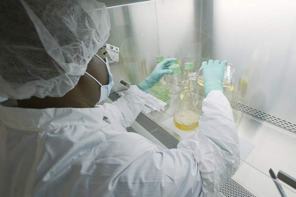 FILE - In this May 2020 photo provided by Eli Lilly, a researcher tests possible COVID-19 antibodies in a laboratory in Indianapolis. On Wednesday, Sept. 16, 2020, Lilly said that partial results from a study testing an antibody drug in mild to moderately ill COVID-19 patients give hints that the drug may help keep them from needing to be hospitalized. But the results have not been published or reviewed by independent scientists. (David Morrison/Eli Lilly via AP)