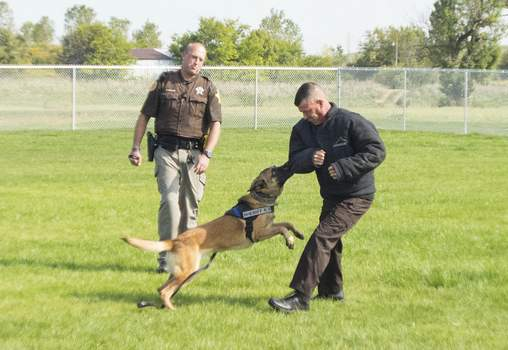 Michelle Davies | The Journal Gazette Sgt. Tyler Harrison, K-9 master trainer, demonstrates the lessons learned by Mako, a 3-year-old Malinois/German shepherd mix, handled by Officer Brandon Reichert, at Wednesday's open house for the Allen County Sheriff Department's newly completed K-9 facility on Paulding Road.