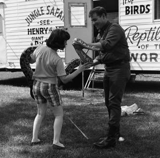 July 1966: One of the snakes from a reptile trailer was brought out for display. (Journal Gazette file photo)