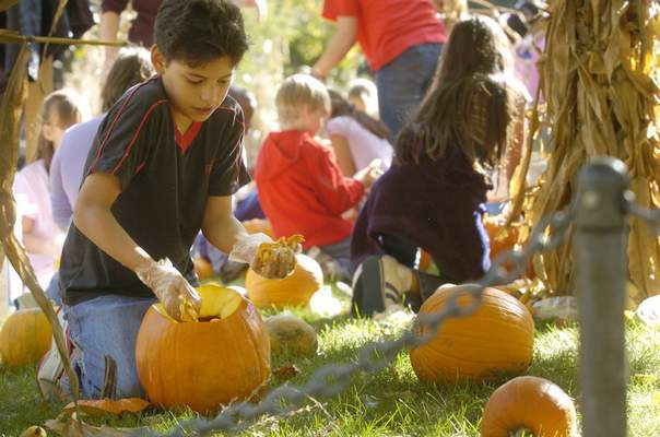 Oct. 18, 2005: Franke Park Elementary School student Gerardo Quintana cleans out a pumpkin for Fort Wayne Children's Zoo's Halloween event where thousands of decorated pumpkins would line pathways. (Journal Gazette file photo by Dean Musser Jr.