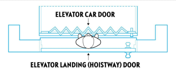 Typical scenario depicting a child trapped between an exterior landing(hoistway) door and interior elevator car door. The exterior door locks the child in the space between the doors when the elevator is called to another floor, putting the child at risk of being crushed or pinned by the elevator door.