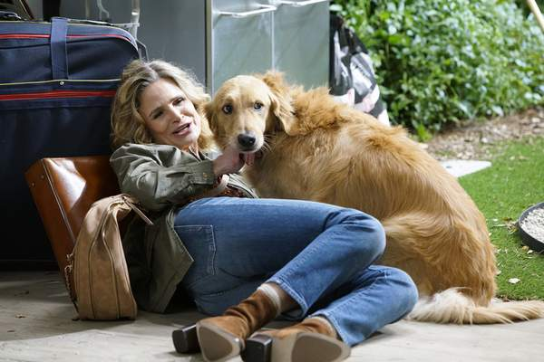 """ABC Kyra Sedgwick stars in """"Call Your Mother."""""""