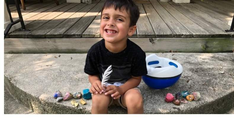 Linda Beer took her grandsons Oliver and Asher on walks around Decatur to find painted rocks.