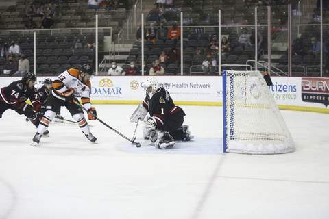 Courtesy Whiteshark Photography 
