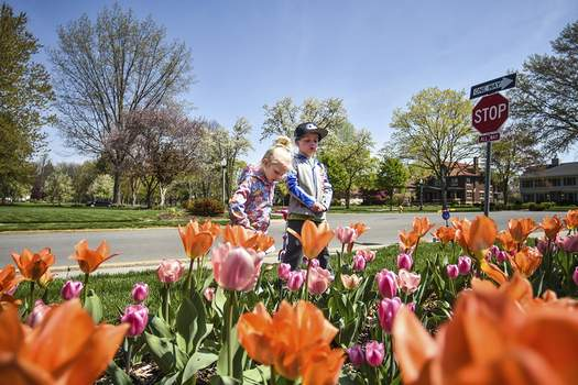 Katie Fyfe   The Journal Gazette Magnolia Kaywood, 3, and her brother Calvin Kaywood, 4, take a break from riding their scooters Monday afternoon to look at a patch of tulips at Lakeside Park.