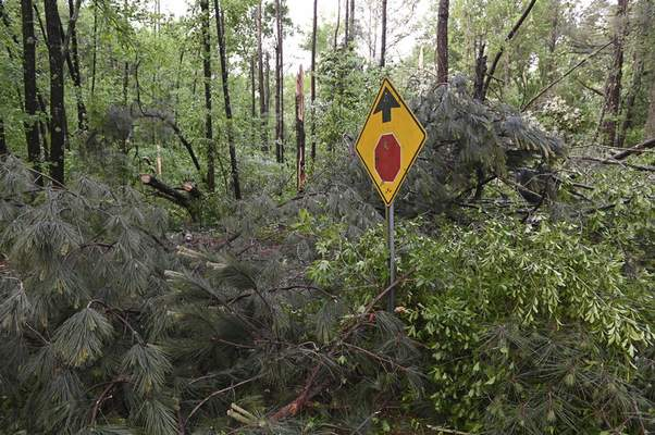 Downed trees cover Oakview Drive in Tupelo, Miss., Monday, May 3, 2021. (AP Photo/Thomas Graning)