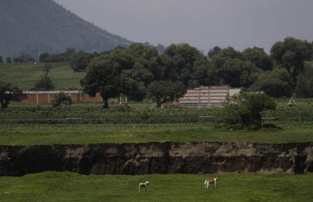 Dogs walk near a water filled sinkhole in Zacatapec, on the outskirts of Puebla, Mexico, Wednesday, June 9, 2021. The massive water-filled sinkhole continues swallowing farmers' fields in the central Mexican state of Puebla. Authorities say an underground river is responsible. (AP Photo/Fernando Llano)
