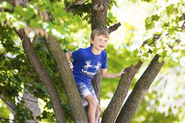 Katie Fyfe | The Journal Gazette Cooper Borcherding, 8, visiting from Florida, climbs a tree during Lunch on the Square at Freimann Square on Thursday.