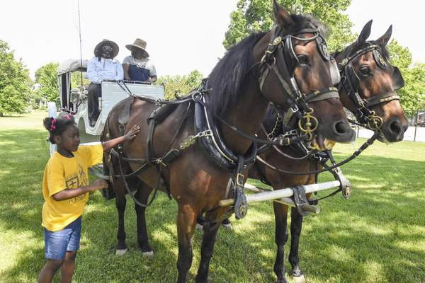 Michelle Davies | The Journal Gazette Serenity Hopkins-Island, 7, pets Wilcox and Lex, registered Morgan horses, owned by Will Stevenson, left, and his son, Luke Stevenson, owners of Rockaway Carriage. The team took part in Saturday's parade celebrating Juneteenth.