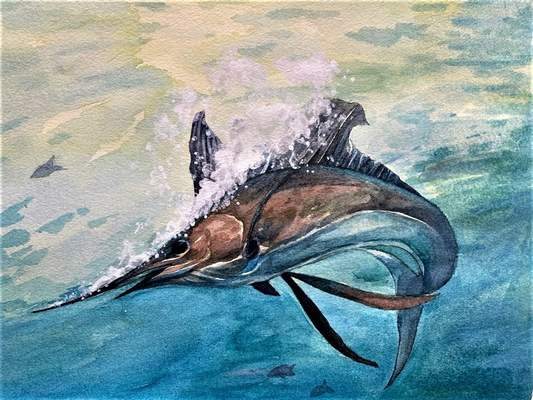 Bellmont eighth graderSophia Lopez won accolades for this watercolor painting of anAtlantic sailfish.