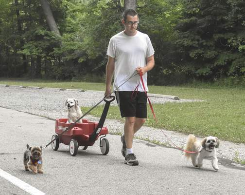 Michelle Davies | The Journal Gazette  Steven Glover of Fort Wayne walks his dogs, from left, Zach, Jake, and Barney, around Shoaff Park Monday afternoon.