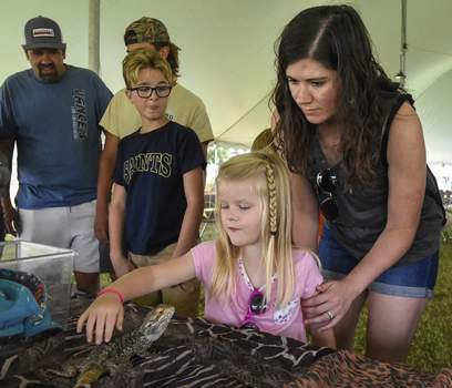 Photos by Michelle Davies | The Journal Gazette Hailey Rohlf, 4, pets T. Rex, a bearded dragon, while her mom, Jennifer Rohlf, looks on Saturday at the Allen County Fair.