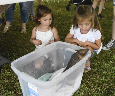 Michelle Davies | The Journal Gazette Four-year-olds Alexis Cobe and Aspen Tone, both from Spencerville, Ohio, check out Dottie the armadillo Saturday at the fair.