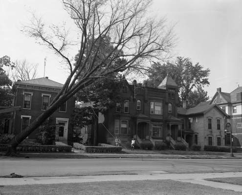 File photos July 19, 1960: A city forestry crew takes down an elm tree suffering from Dutch elm disease at Fulton and Wayne streets downtown. Thousands of elms were removed around the city in a project that began in the 1950s.
